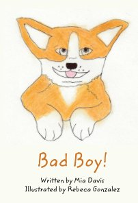 Bad Boy! book cover