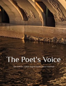 The Poet's Voice book cover