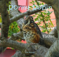 Ronny Robin lernt das Fliegen [Hardcover] book cover