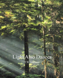 Light Also Dances book cover