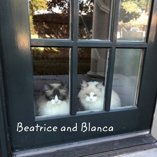 View Beatrice and Blanca by Breland Bach