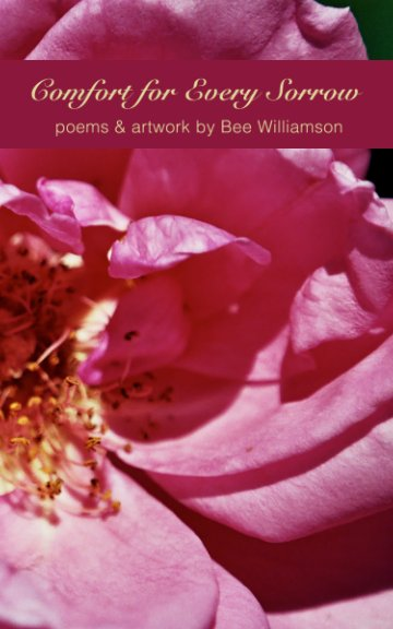View Comfort for Every Sorrow by Bee Williamson