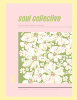 Soul Collective book cover