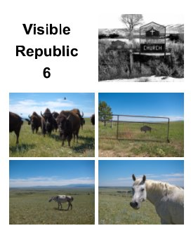 Visible Republic 6 book cover