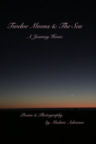 Twelve Moons And The Sea book cover