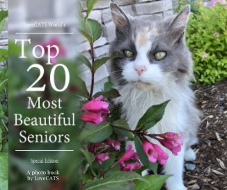 Top 20 Most Beautiful Senior Cats book cover