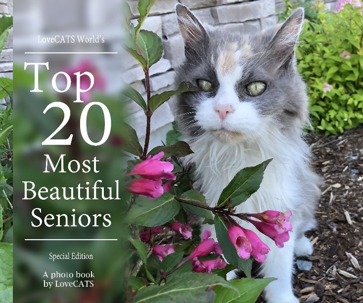 View Top 20 Most Beautiful Senior Cats by A photo book by LoveCATS