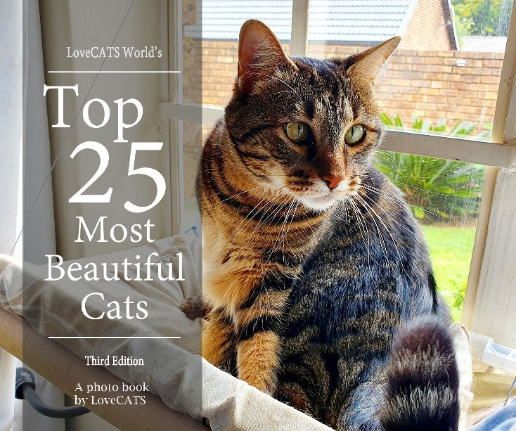Visualizza Top 25 Most Beautiful Cats -3rd Edition di A photo book by LoveCATS