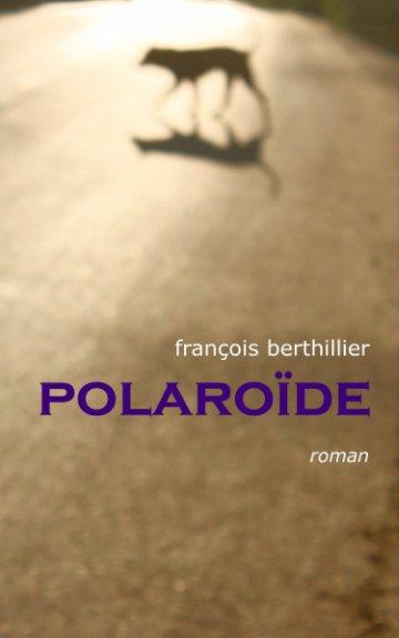 View Polaroïde by François Berthillier