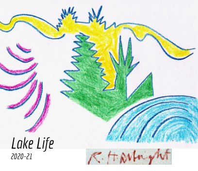 Lake Life book cover