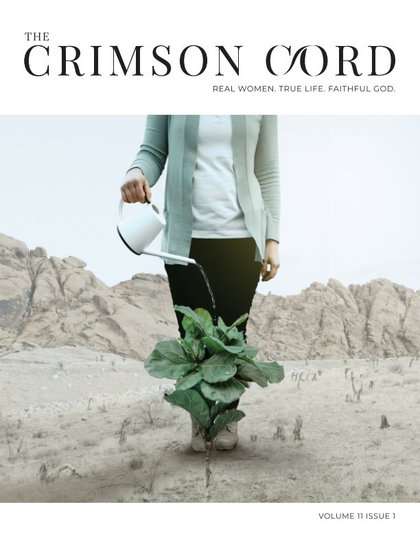 View CC - Issue 11 Volume 01 by The Crimson Cord