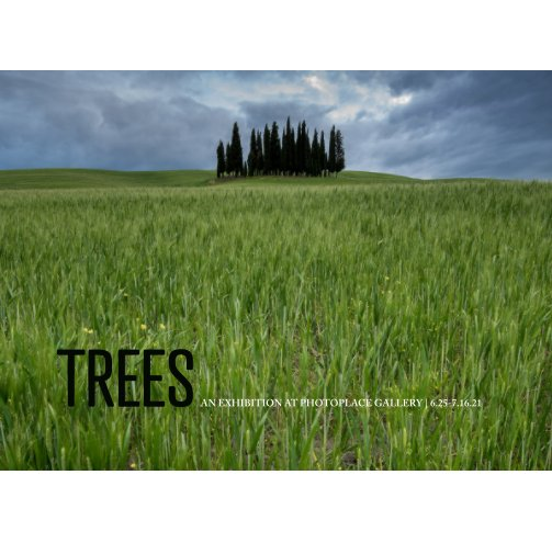 View Trees, Hardcover Imagewrap by PhotoPlace Gallery