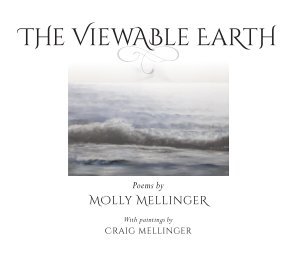 The Viewable Earth book cover