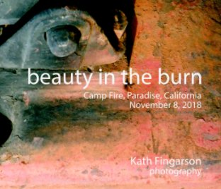 Beauty in the Burn book cover