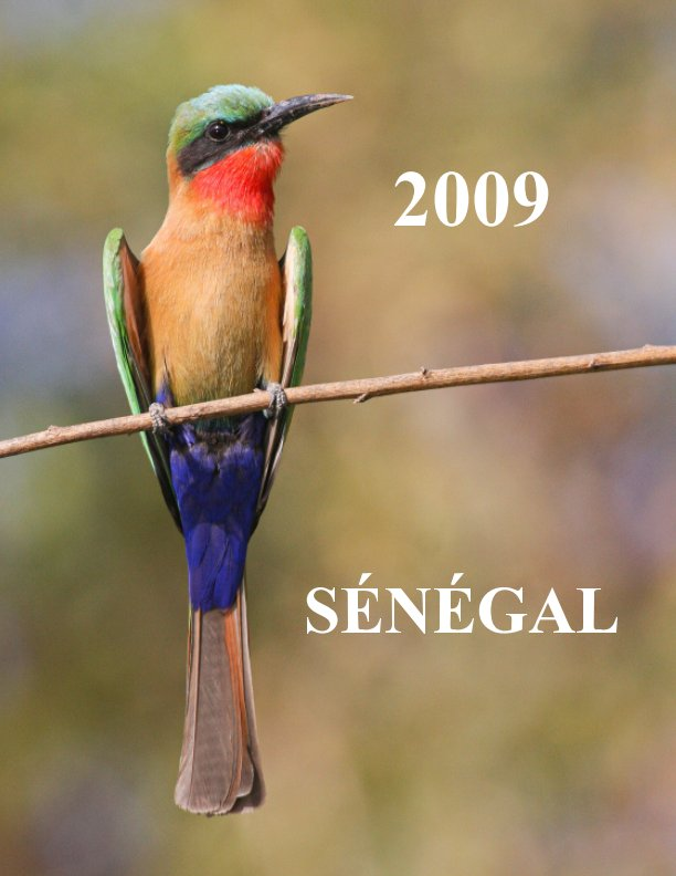 View Sénégal 2009 by Alain Jouffray