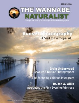 The Wannabe Naturalist Magazine Edition 2021-2 book cover