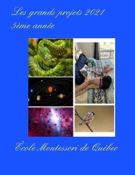 Les grands projets 2021 (5ème année) book cover