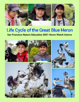 Life Cycle of the Great Blue Heron book cover