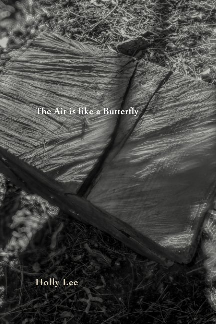 View The Air is like a Butterfly by Holly Lee