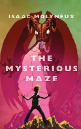 The Mysterious Maze book cover