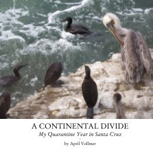 A Continental Divide book cover
