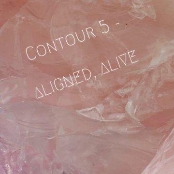 View Contour 5- Aligned, Alive by Sky Drews