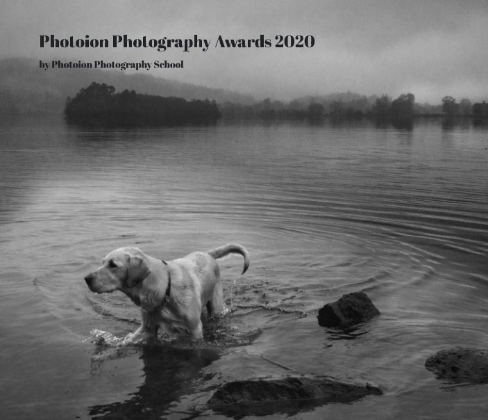 Bekijk Photoion Photography Awards 2020 op Photoion Photography School