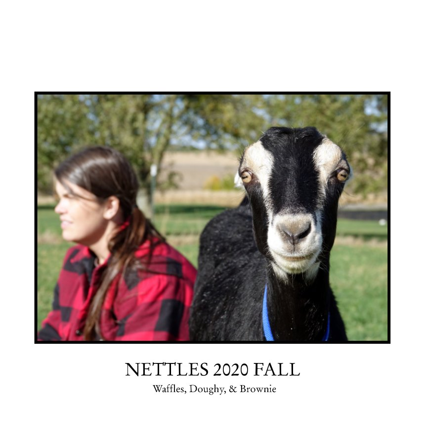 View NETTLES 2020 Fall by CURT ROBERTS