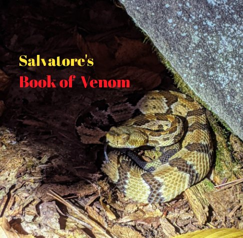 View Sal's Snakes by Salvatore Dellachiesa