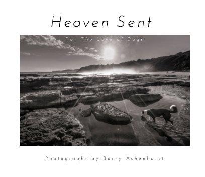 Heaven Sent book cover