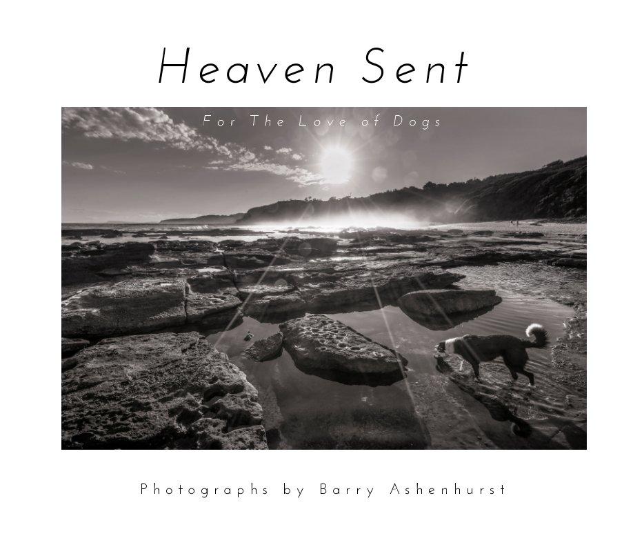 Ver Heaven Sent por Barry Ashenhurst
