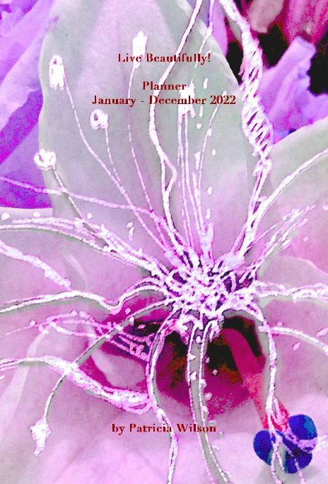 View Live Beautifully! Planner January - December 2022 by Patricia Wilson