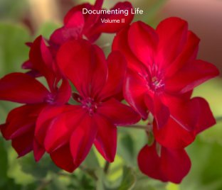 Documenting Life book cover