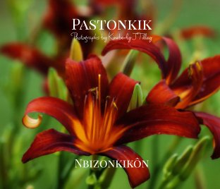 Pastonkik book cover