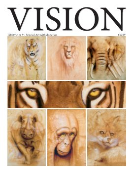 Vision Lifestyle 9 book