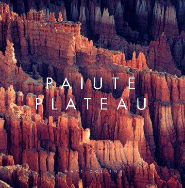 Paiute Plateau book cover