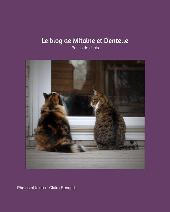 Visualizza Le Blog de Mitaine et Dentelle di Claire Renaud