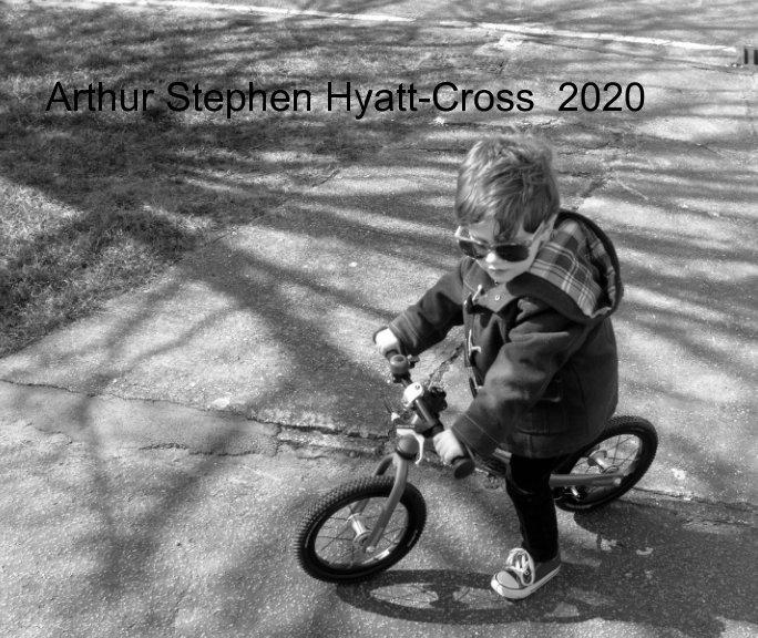 View Arty2020 by stephen hyatt-cross,