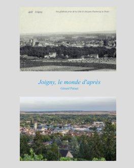 Joigny, le monde d'après book cover