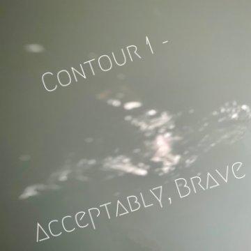 Visualizza Contour 1- Acceptably, Brave di Sky Drews