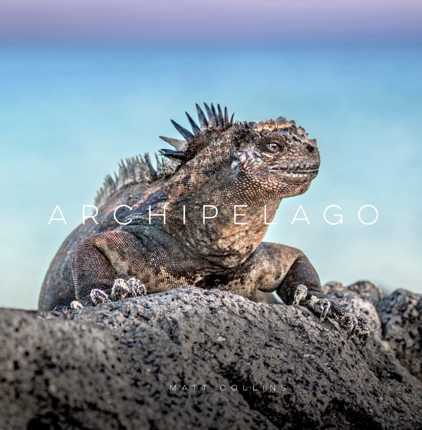 View Archipelago: Images of the Galápagos Islands by Matt Collins Photography