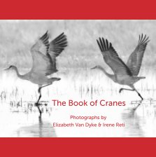 The Book of Cranes book cover