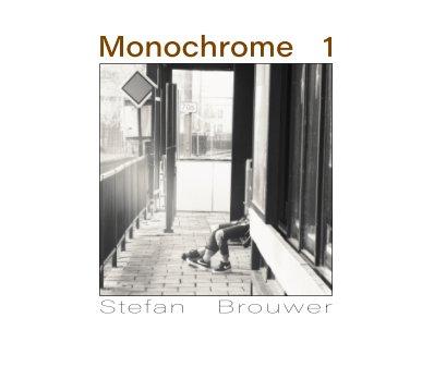 Monochrome 1 book cover