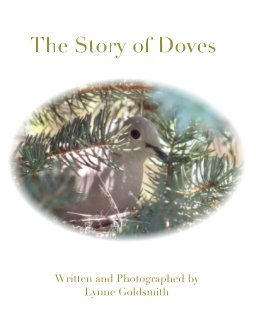 The Story of Doves book cover