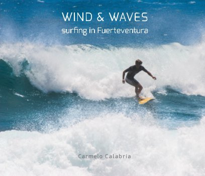 Wind and Waves book cover