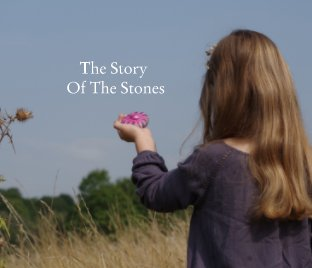 The Story Of The Stones book cover