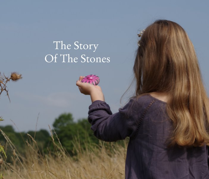 Ver The Story Of The Stones por Peter Wood