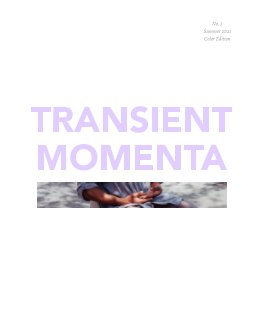 transient momenta 2 book cover