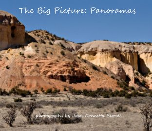 The Big Picture: Panoramas book cover