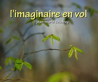 L'imaginaire en vol book cover